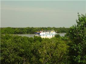 Boat on a river in a densely forested plain.