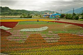 Taiwan 2009 FuLi Town Paint with Flowers FRD 8103.jpg