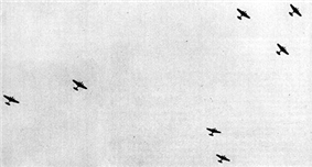 A distant photo taken from ground where several bombers are flying in the air.