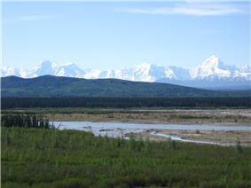 A shallow braided river flows over a plain partly covered by green plants and grasses. Jagged snow-covered mountains rise in the distance.