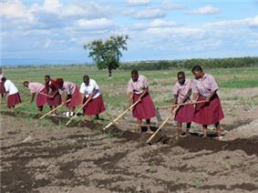 Students Tending School Crops
