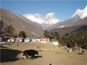 A village in a large mountain valley. In the distance very high snow-covered mountains are visible.