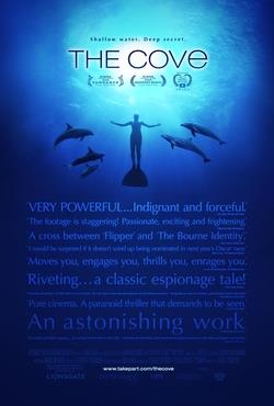 A man swimming underwater surrounded by five dolphins. Above is the title
