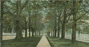 The Mall c. 1906