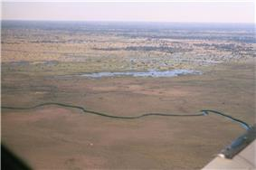 The Okavango Delta from 1,200 ft.jpg