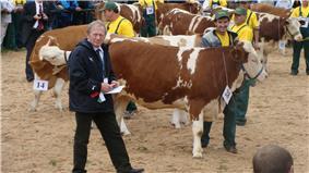 The autumn cattle exhibition in Rudawka Rymanowska 2008.JPG