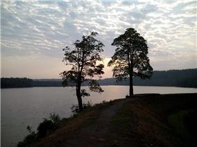 Thejaswini River