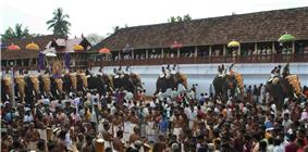 Thrippunithura-Elephants7 crop.jpg