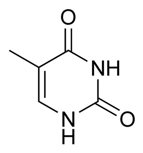 Chemical structure of thymine