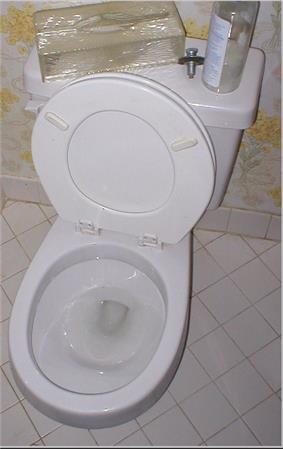 Close coupled cistern type flushing toilet.