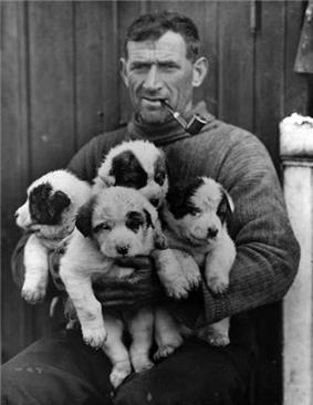 Man, sitting, wearing heavy winter clothes. He has a pipe in his mouth and is holding four sled dog puppiess.