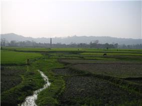 Green agricultural field, with a hill range far in the background