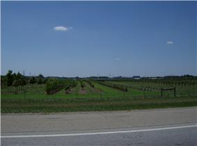 Although Turtlecreek Township is located in an increasingly developed area, it still includes agricultural land, such as this orchard