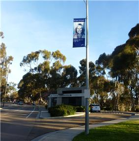 Photo on a light pole of a woman smiling in front of Visitor Information booth, lots of trees
