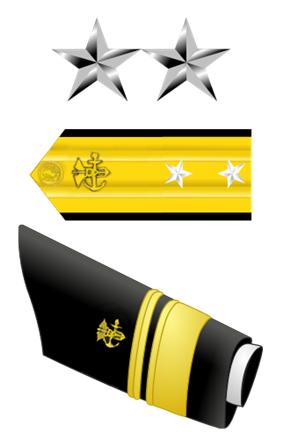 USA - PHS - O8 insignia.png