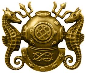 Diving officer badge