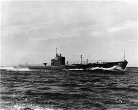 USS Salmon