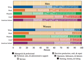 Distribution of US occupations by race.