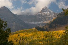 Aspens below mountains in fall.