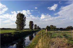 Long straight water filled channel, with occasional trees on the left hand bank and grass on the right hand bank.