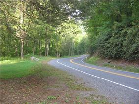 A two-lane road curves through a green forest, with grass at left