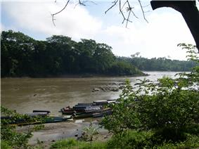 Boats line the near shore of a middle-sized river in a forest.