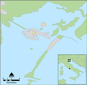 Location of Dogado