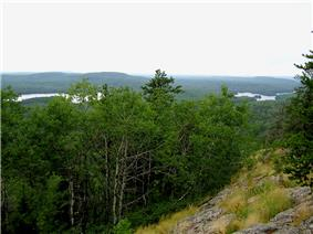 The view over the forest from Eagle Mountain.