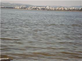 View of Larnaca Salt Lake Republic of Cyprus.jpg