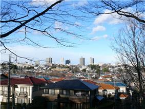 Central Tokorozawa from Hachikokuyama