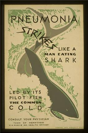 A poster with a shark in the middle of it, which reads