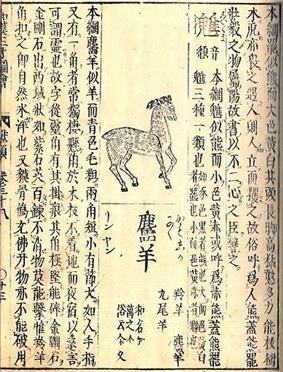 Encyclopaedia page featuring a drawing of a deer-like animal.  It is surrounded with Japanese writing.