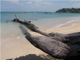Skyline of Andaman and Nicobar Islands
