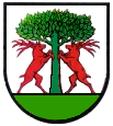 Coat of arms of Fachsenfeld
