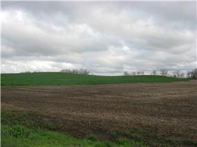 Ware Mounds and Village Site