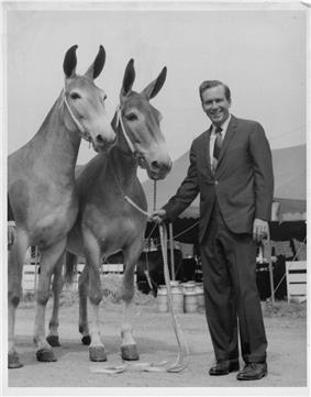 Missouri Governor Warren Hearnes with champion mules at 1969 state fair