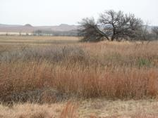 Washita Battlefield