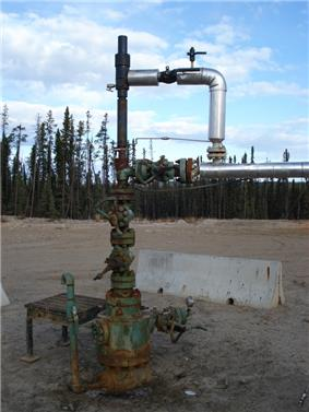 Wellhead-plunger lift.jpg