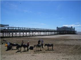 Long walkway supported by metal legs arising from the sand, leading to a white painted building. In the foreground are donkeys on sand.