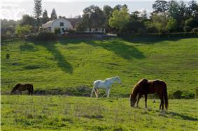Westwind Community Barn
