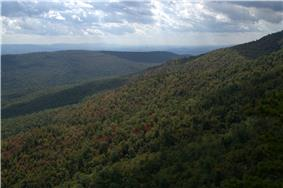 Forested mountains viewed from the White Rocks on Little Sluice Mountain.