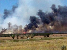 Flat expanse of brown grasses and some green trees with black and some gray smoke and visible flames in the distance.