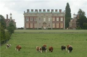 Large two-storey brick building, flanked by two smaller brick pavilions. In front of the larger building is a herd of cattle.