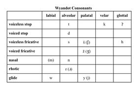 Wyandot consonants new