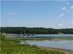 A tree-lined lake with lily pads and four pontoon boats at a dock in the distance