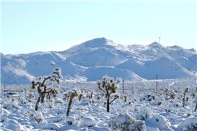 Snow in Yucca Valley, near Joshua Tree National Park